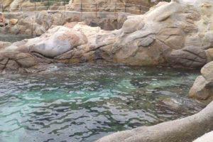 Elba in Vespa
