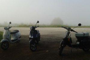 Vespa nella nebbia